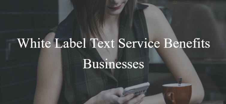 A gril in a plaid navy & green dress reading a text message sent from a white label text service